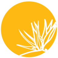 Agora Logo Circle Strelitzia